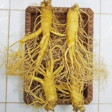 Sâm tươi Hàn Quốc loại 4 củ 1 kg
